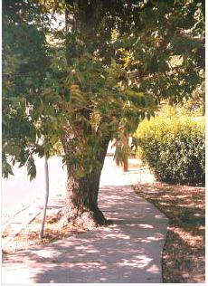 Figure 4-40