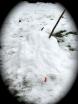 snowman14dec09demise