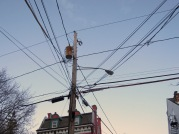 wires - Cucumber at Wash Av