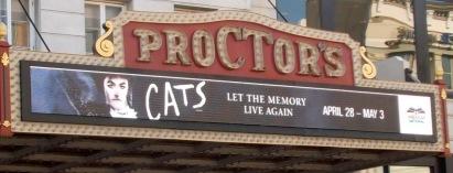Cats-AmNat