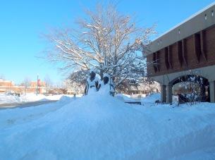 Seward-Tubman in snow bank